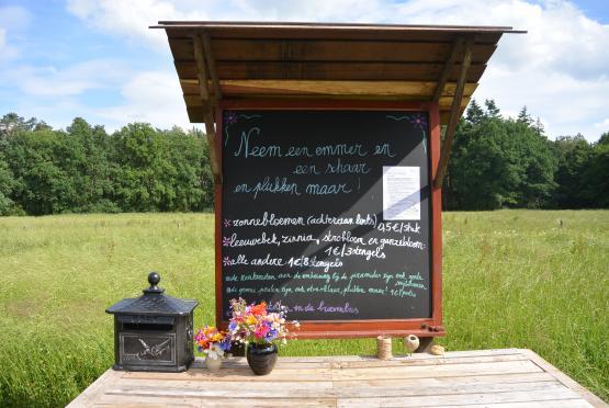 Foto van Talander opent plukweide in Arendonk